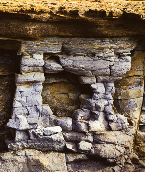 At the tide line, erosion of sandstone creates and destroys formations.