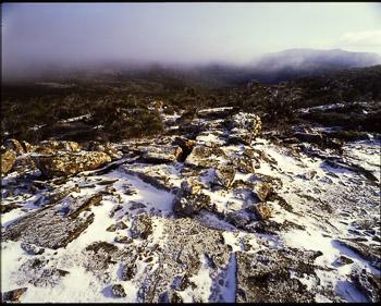 Mt Blackwood, Central Plateau
