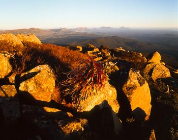 Mt Dundas
